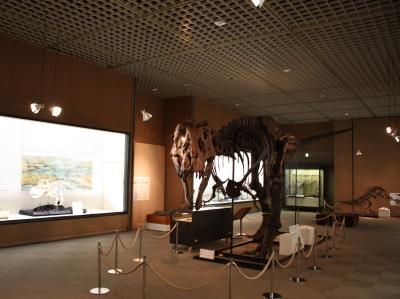 ティラノサウルスの後ろに…!?