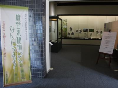 佐野市郷土博物館にて